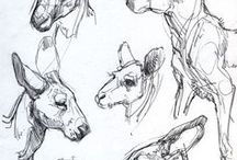 Zeichnen Im Zoo / Collection of animal sketches/ drawings, anatomy studies and movement