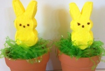 ~Easter has Sprung!~