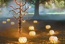 Halloween, Thanksgiving & Fall / All things related to the fall season...