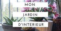 JARDIN d'INTERIEUR / Inspiration pour créer un jardin d'intérieur façon jungle. Pas beaucoup d'espace mais envie d'accumuler pots et fleurs en cascades