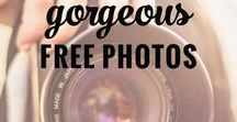 Blogging / Blogging information, freebies and more!