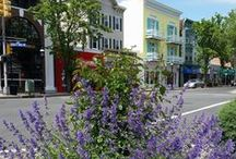 Downtown Scenes / by Downtown Cranford