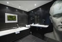 Live Pictures - Living Art on your wall / Live Picture is living art - wall mounted vertical landscaping in a picture frame, creating green walls for all types of businesses and public spaces