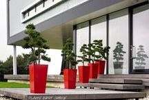 Outdoor Office Plants / A collection of outdoor office plants and displays perfect to spruce up the outside of any office or business.
