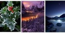 Deep Winter / Shaded Winter