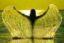 All wings