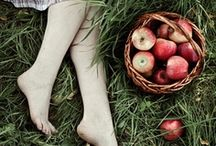 delicious apples / good to eat, nice to decorate / by clara viñas