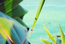 Un été coloré avec Terre de Bijoux / Évadez-vous à travers cette galerie spéciale été ! On vous laisse rêver et on vous donne des idées pour embellir vos poignets, vos mains et vos oreilles ! #summer #soleil #vacances #bijouxpierresnaturelles #love #tendance #bijouxonline #madeinfrance #bijoux #handmade #bijouxcréateur #argent #or #bracelets #bagues #jewelry #bouclesdoreilles #braceletsargent #braceletargent #bagueargent #bagueor www.terredebijoux.com