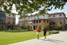 Residence Halls  / Here you will find information about all the on-campus living options at LSU. / by LSU Residential Life