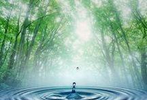 """""""Si te quedas sin agua, te quedas sin vida"""" / Conoce a través de libros y Dvds  la gran importancia del agua como recurso natural."""