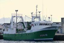 Arrastreiros de litoral (Muros) / Barcos de arrastre de litoral con base en Muros ou con armadores de Muros.