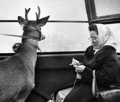 Back Then / Vintage travel posters and wanderlust inspiring vintage photographs.