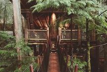 Treehouses / My childhood obsession comes alive with awesome tree house hotels and homes.