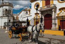 RINCONES DE SEVILLA / Lugares singulares de la sede de uno de nuestros Aparcamiento Lavacolla.