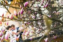 Фотограф / свадебный фотограф в Праге