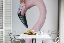 Statement Walls - are you brave enough / Use colour, design, texture, art, mirrors, plants - the options go on...