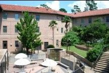 Broussard Hall / by LSU Residential Life