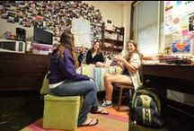 The Horseshoe / by LSU Residential Life