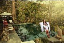Wellness in India / gorgeous wellness retreats in India