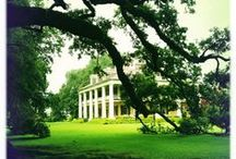 Historic Plantations & Architecture / Louisiana's historic plantations represent a unique look into the state's memories that date back before the civil war. These antebellum mansions are meticulously preserved and echo the stories of yesterday.  Enjoy tour options, stay the night, or book your perfect wedding.  Also enjoy the other types of historic architecture that set the scene around Louisiana. / by Louisiana Travel