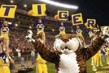 Geaux Sports! / From the New Orleans Saints, to the Hornets, to LSU Tigers, Jaguars, to Bulldogs (oh my!), we love sports!  Whether it's Football or Roller Derby, Louisiana sports fans are the best! Geaux Louisiana! / by Louisiana Travel