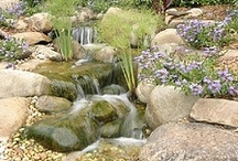 Orange County Koi Pond Repair / 