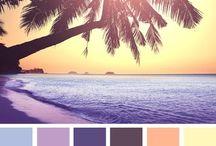 Colors# / Color pallet