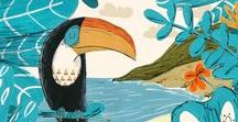 Toucans / Les toucans