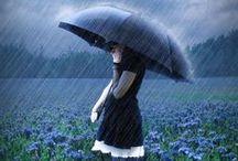 Rain Dreams / by Ronnette