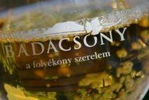 BADACSONY (Lake Balaton/ Hungary - Plattensee/ Ungarn) / Bacchus Apartman - Badacsony - Lake Balaton - Hungary.