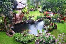 Beautiful Back Yards / Back yard creative ideas for the backyard