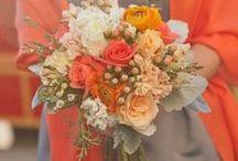 Orange Crush...I Do's / by Sherry Hagen