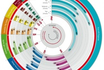 Infographics (Nutrition)