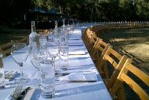 Tablas Creek Events / At home and around the country