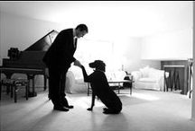 Doggone Cute! / Lots of our customers have FUR babies and we love seeing dogs incorporated into the wedding day as well. here are some fun ideas and pictures to inspire your day with some puppy love.