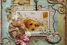 *scrapbook* / PAPER DREAMS / by Davis Sugar