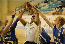 The Men of Wheelchair Basketball 2011-2013 / Featuring the male athletes who play wheelchair basketball around the world