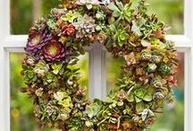 Wreaths / wreaths, whether outdoors or in...can add so much warmth to a space..love living outdoor wreaths.. / by Jo Johnson