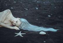 Sirens, Mermaids, and the Sea / Sirens mermaids and the sea.