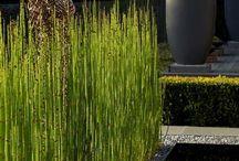 Gardens Art and Sculpture