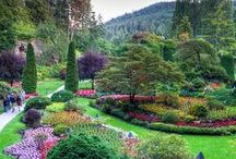 Gardens around the world / If your a keen enthusiast looking for inspiration or simply wanting to experience the different wonders of mother nature, itineraries organised by The Ultimate Travel Company cover many of the world's most beautiful gardens.