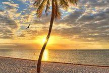 Life's a Beach / Why not enjoy it?