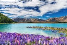 Middle Earth / A landscape that brought a world to life. New Zealand has to be seen to be believed.