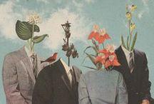 COLLAGE / Collage, photo, arte