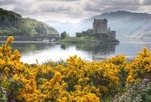 Scotland / by Louise Goldstein