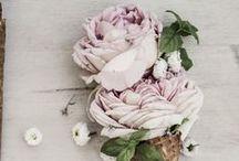 Floral / Decadent Floristry