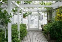 garden / A collection of ideas for my garden, my postage stamp of the world.
