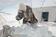 Inuité