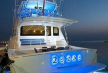 Viking / Viking Yachts was founded in 1964 by brothers Bob and Bill Healey, and they have produced over 4,000 semi custom yachts in the past 5 decades and regarded as world leaders in the fibreglass luxury performance sportfishing and cruising yachts.