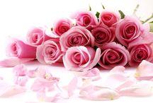 I love roses.... / ❤️❤️❤️